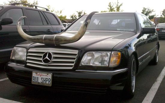 bull_shipper_car.jpg