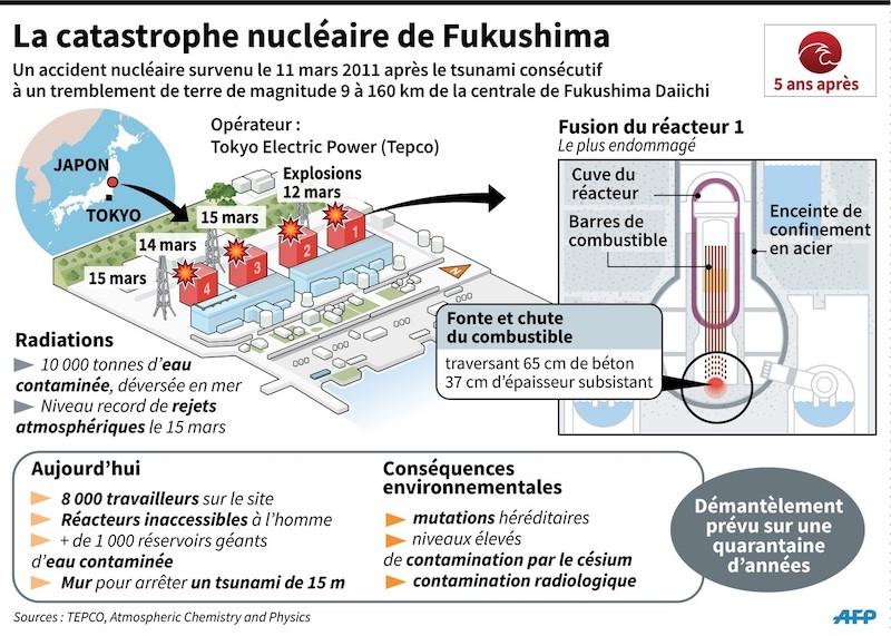 Plan-site-nucleaire-Fukushima-Japon-schema-simplifie-reacteur-numero-1-consequences-actuelles-catastrophe_1_1400_997.jpg