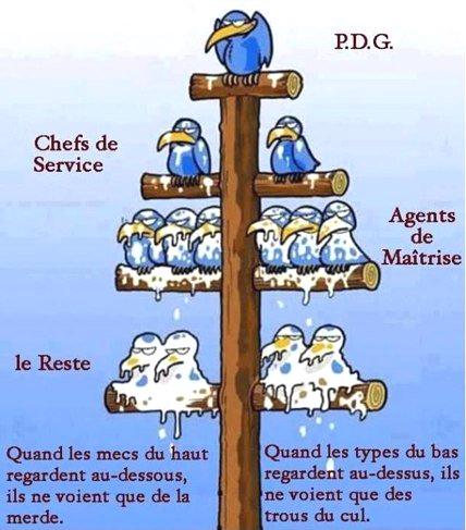 La Hierarchie.jpg