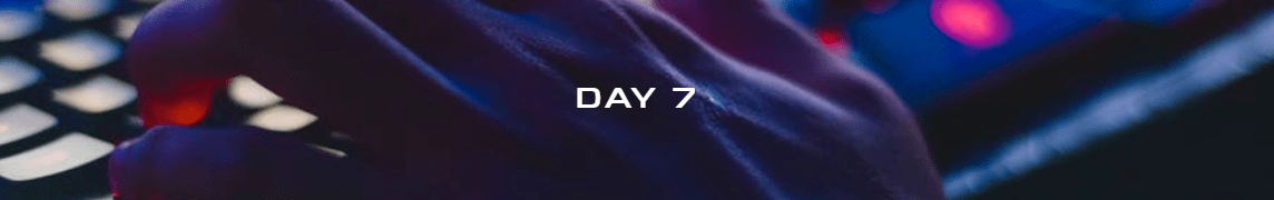 day7.png