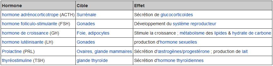 hormone antehypophyse.jpg