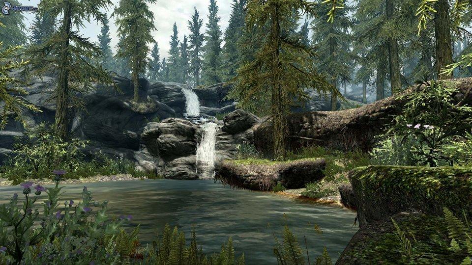 rsz_forest-waterfall-lake-coniferous-forest-rocks-209632.jpg