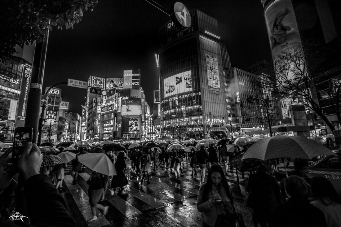 7 tokyoshibuya2.jpg