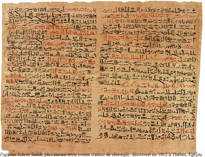 2 - papyrus.jpg