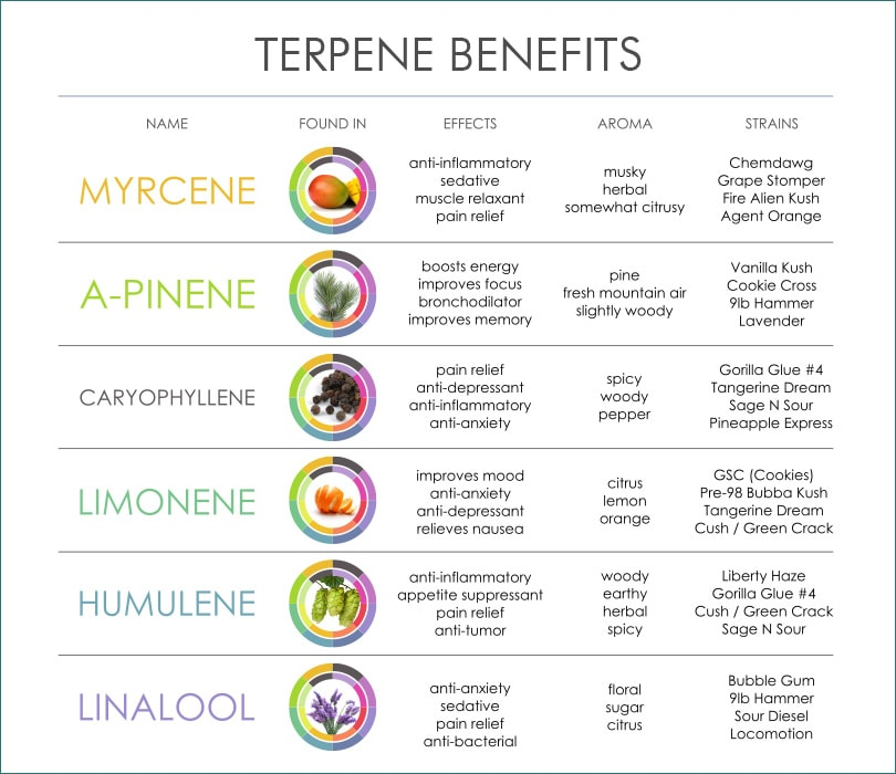 cannabis-terpene-benefits.jpg