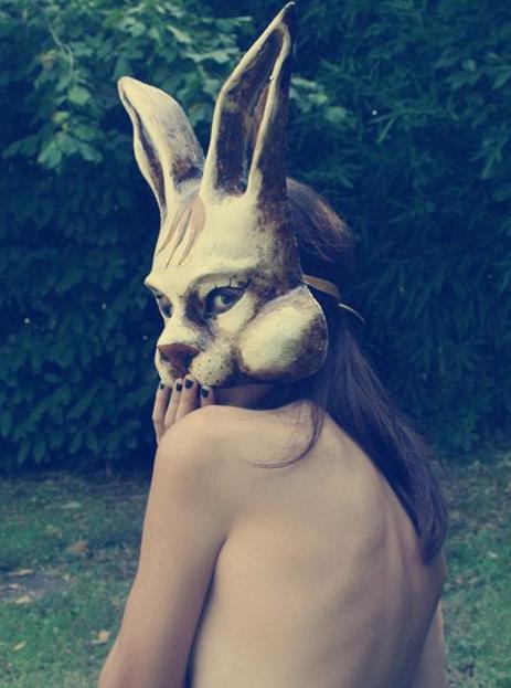 follow white rabbit